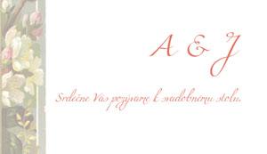 Svadobné Oznámenie LSO65